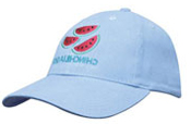 Youth Size Cap – 4040