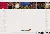 Promotional Desk Calendar – 2