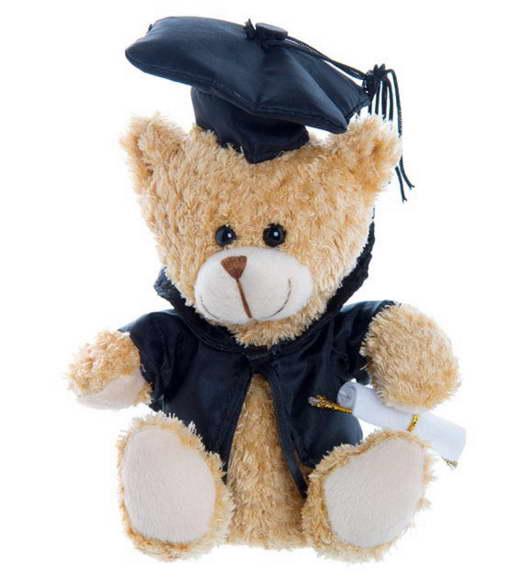 Graduation Bear – 15cm