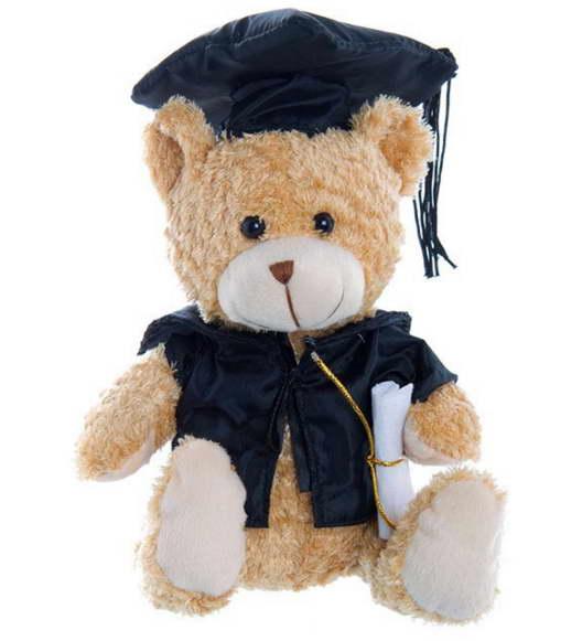 Graduation Bear – 20cm