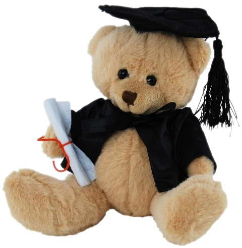 Graduation Bear – 14cm