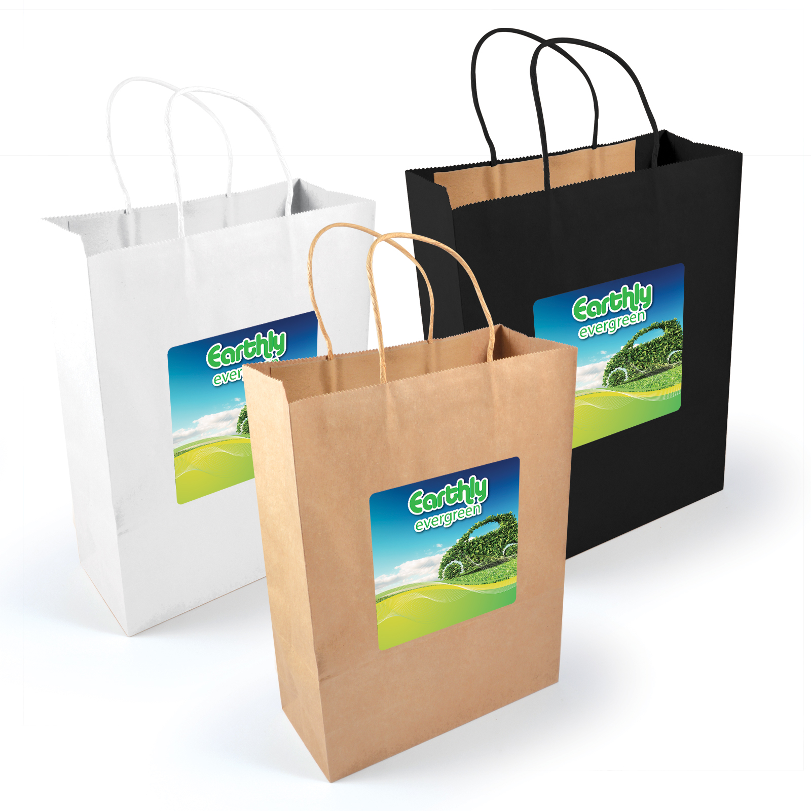 Express Paper Bag – Large – LL549