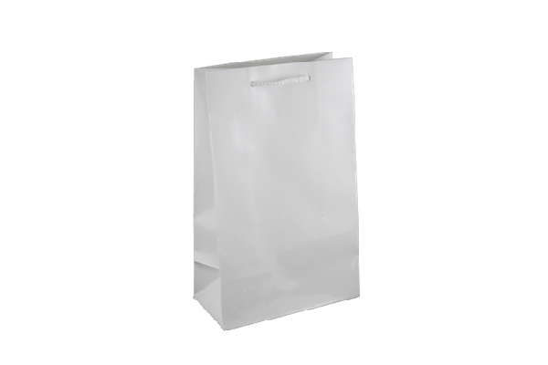 Small White Gloss Laminated Paper Bag Printed – KBLSFP